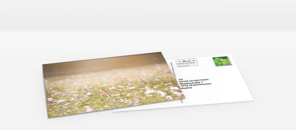 Foto-Postkarte online gestalten und bestellen Foto-Postkarte online gestalten und bestellen
